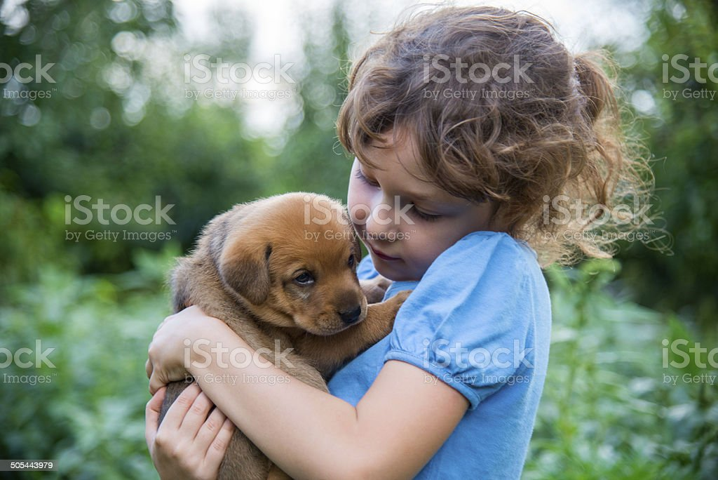 Little girl with a puppy in her arms stock photo