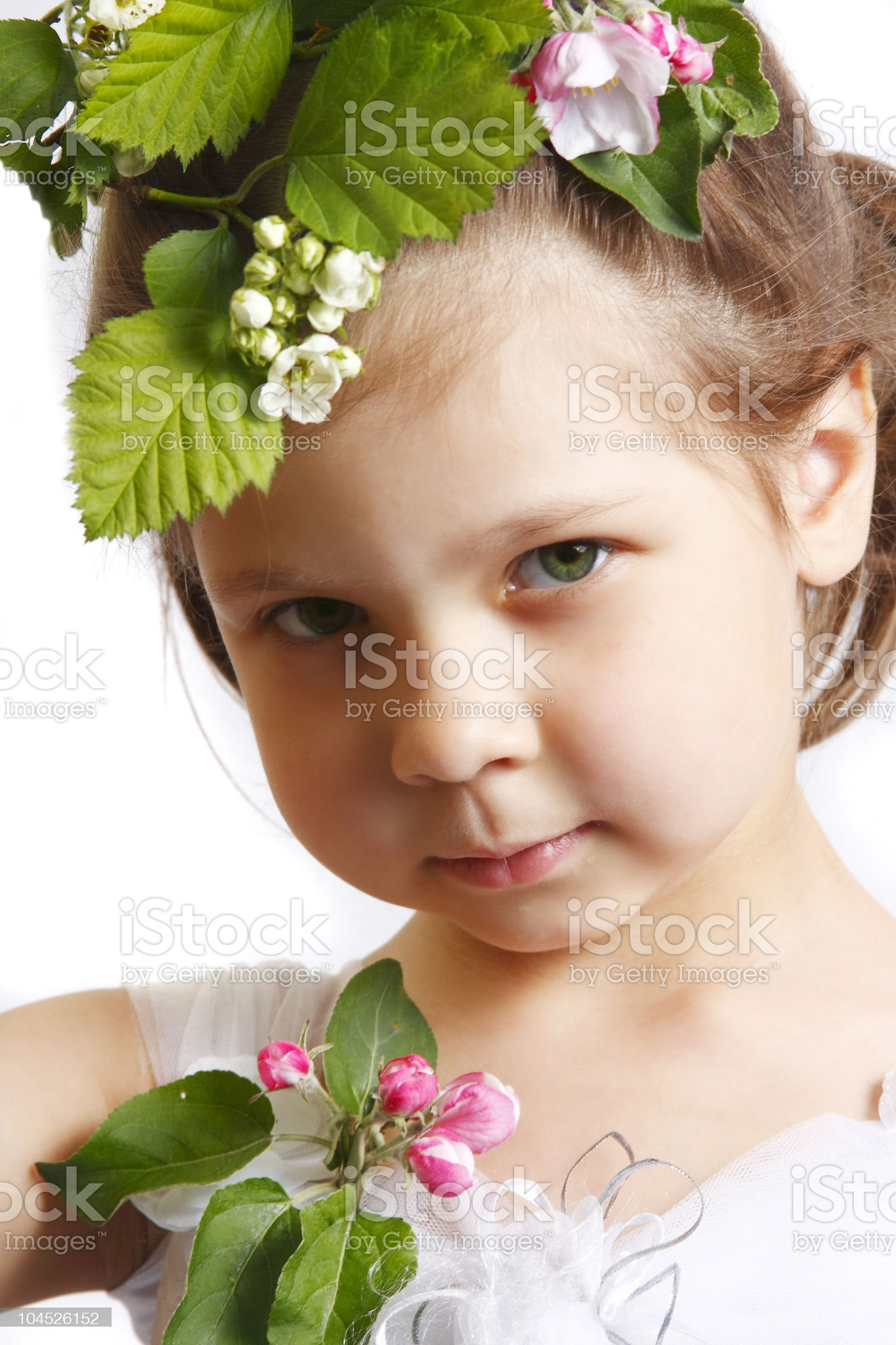 little girl with apple blossom royalty-free stock photo