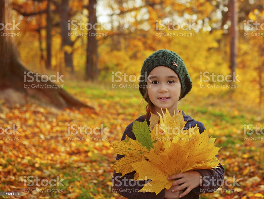 Little girl with autumn leafs royalty-free stock photo