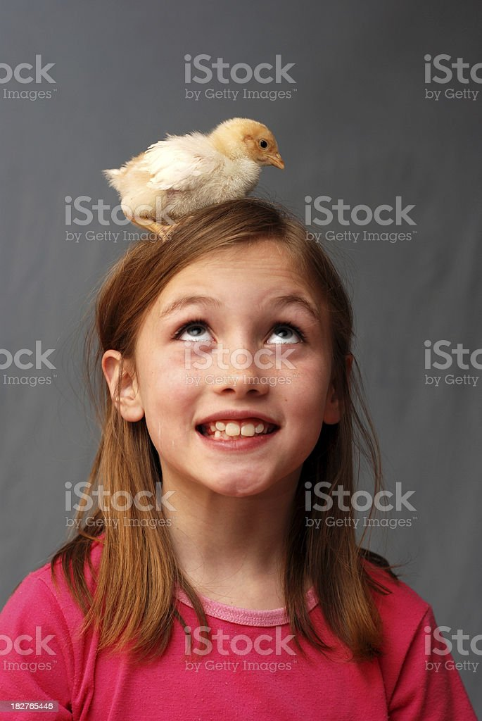 Little Girl with Baby Chick stock photo