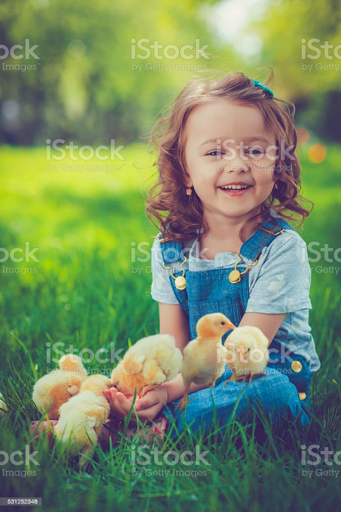 Little girl with chickens stock photo
