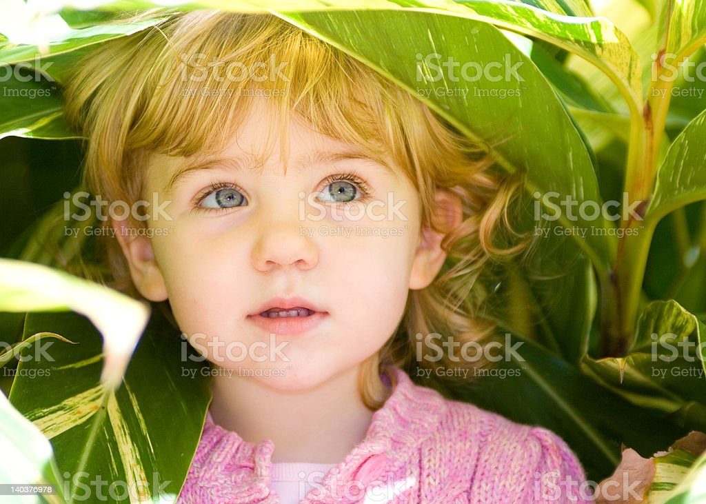 Little Girl with Curly Hair looking Up royalty-free stock photo
