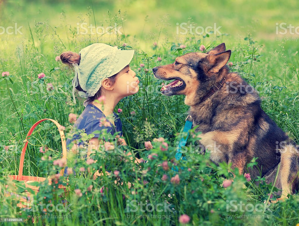 Little girl with dog on the lawn stock photo