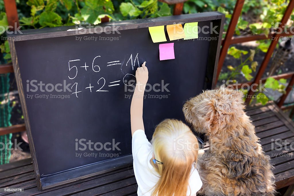 little girl with dog writing answer to the exerciseusing chalk stock photo