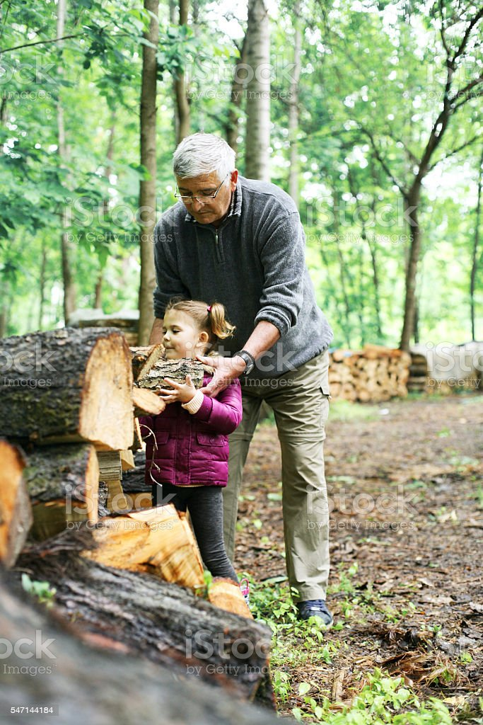 Little girl with grandpa on the village. stock photo