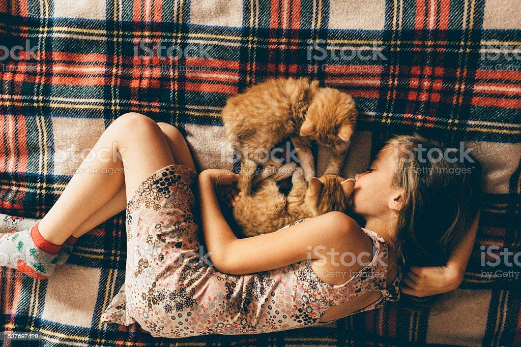 Little girl with kittens stock photo