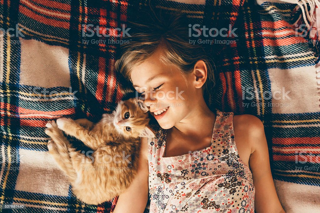 Little girl with kittens stock photo
