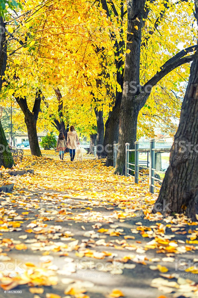 Little girl with mother walking in park stock photo