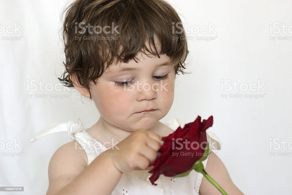 Little Girl with Rose 2 royalty-free stock photo