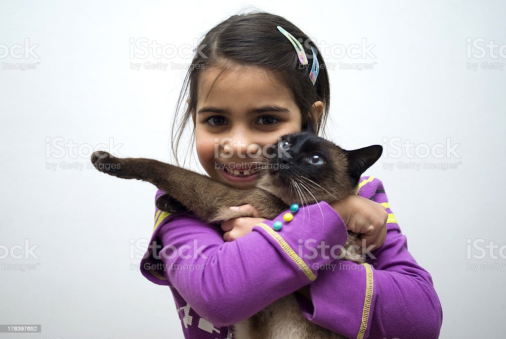 Little girl with siamese cat royalty-free stock photo