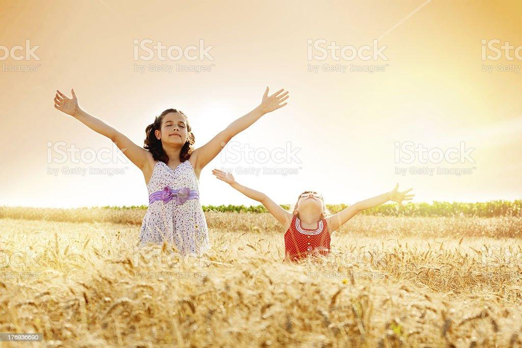 Little girls in a wheat field royalty-free stock photo