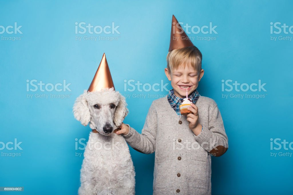 Little handsome boy with dog celebrate birthday. Friendship. Love. Cake with candle. Studio portrait over blue background stock photo