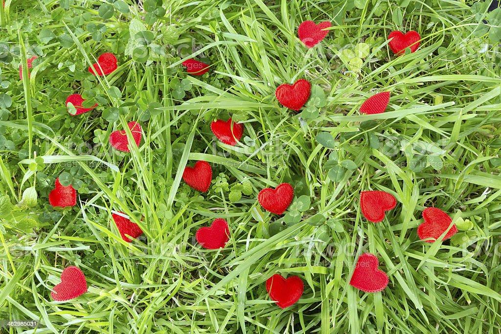 Little hearts in a meadow stock photo