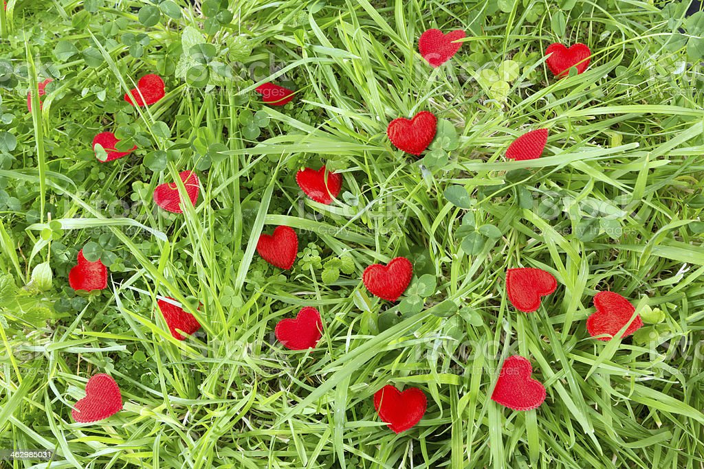 Little hearts in a meadow stock photo