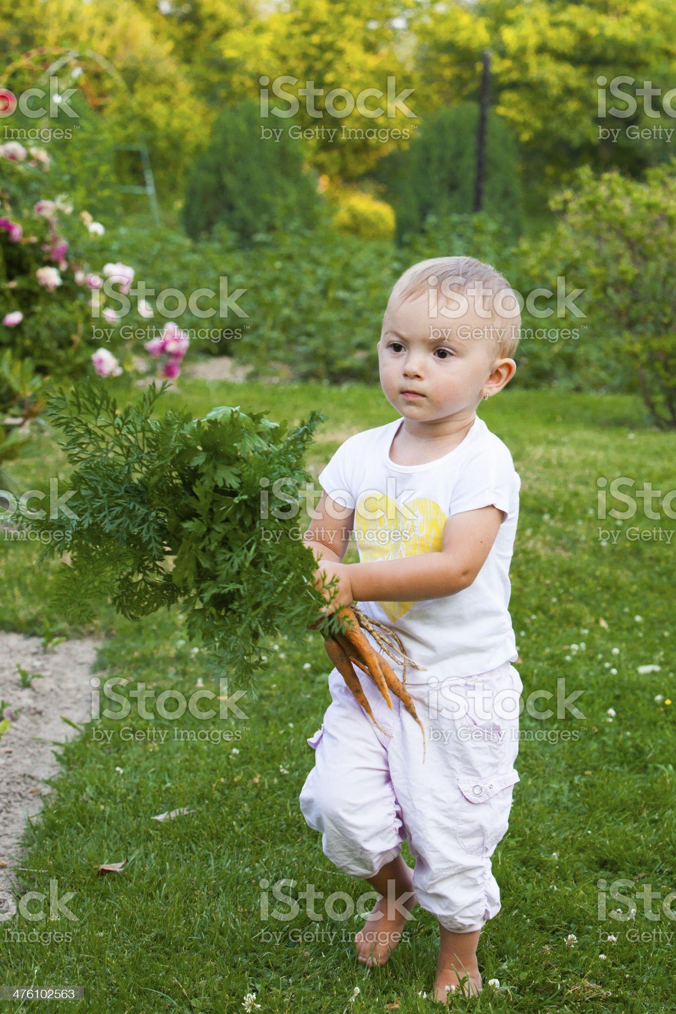 Little helper royalty-free stock photo