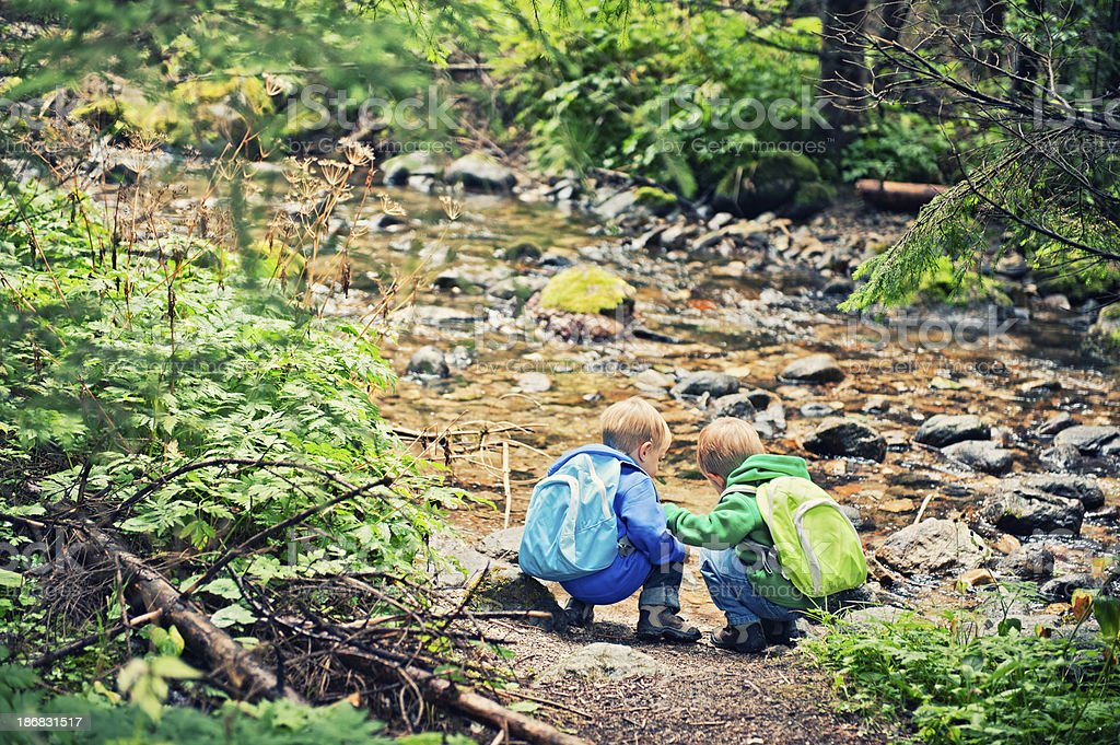 Little hikers at the stream royalty-free stock photo