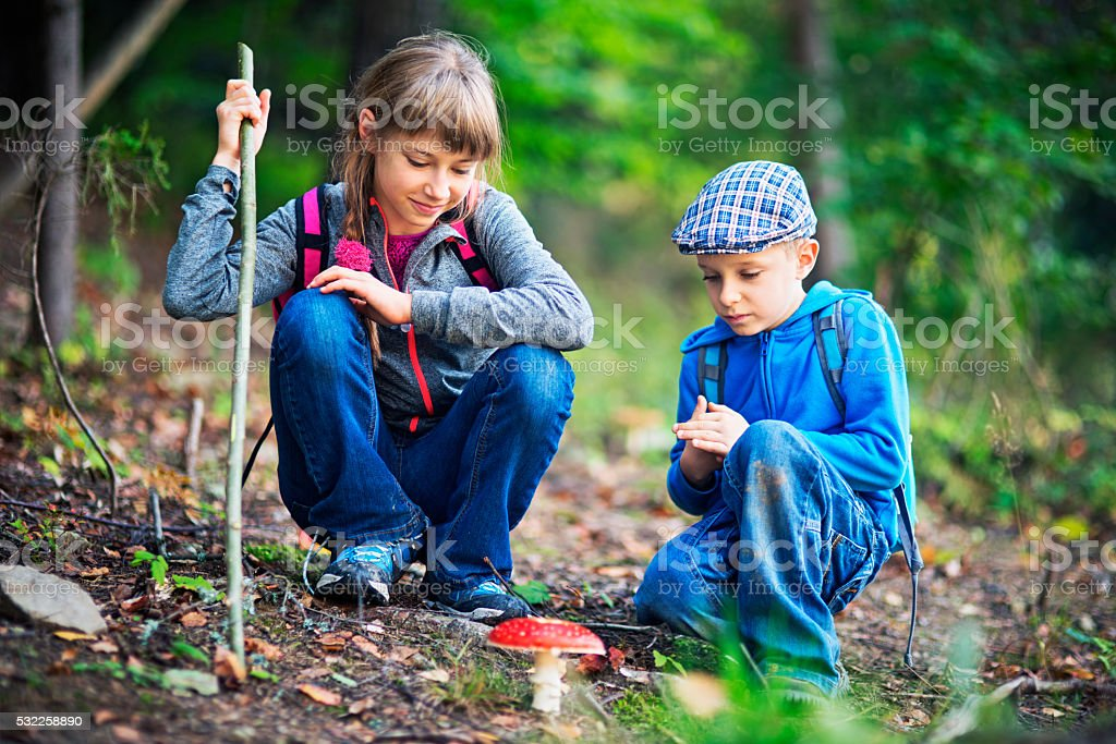Little hikers have just found a toadstool stock photo