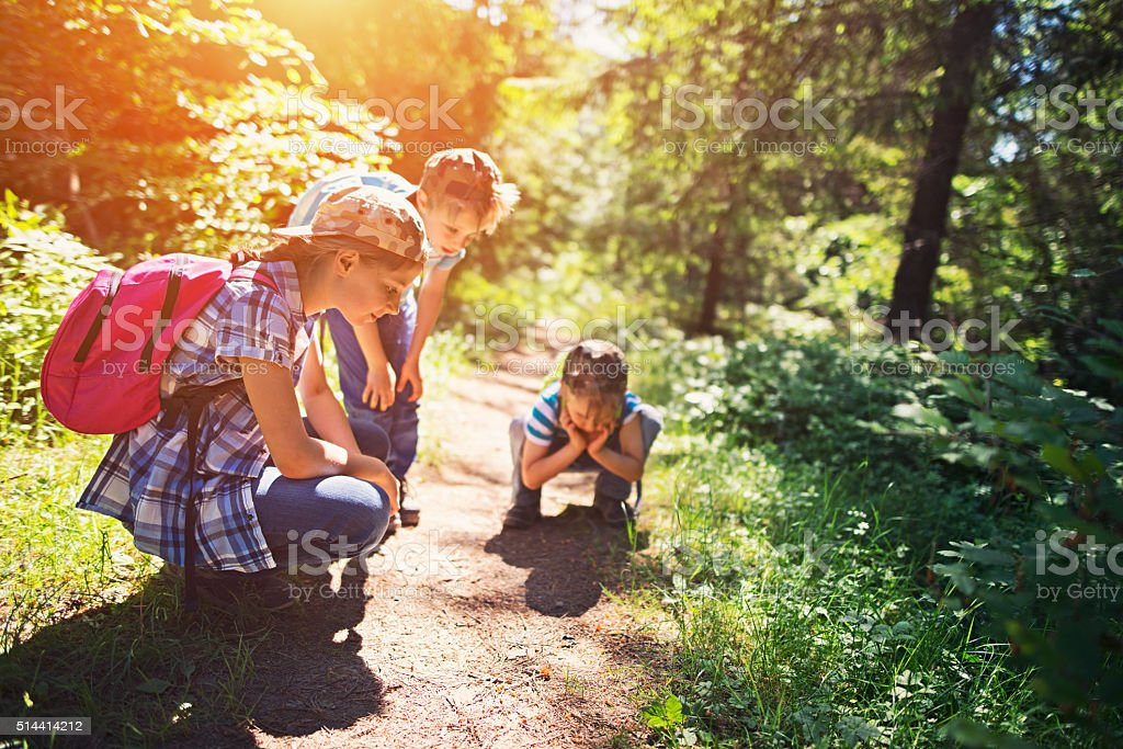 Little hikers observing little beetle on forest path stock photo