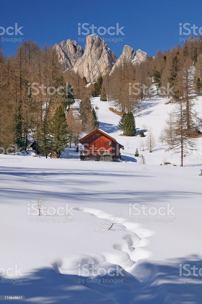 Little Hut in the Woods  (Dolomites - Italy) stock photo