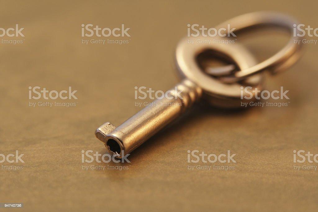 Little Key stock photo