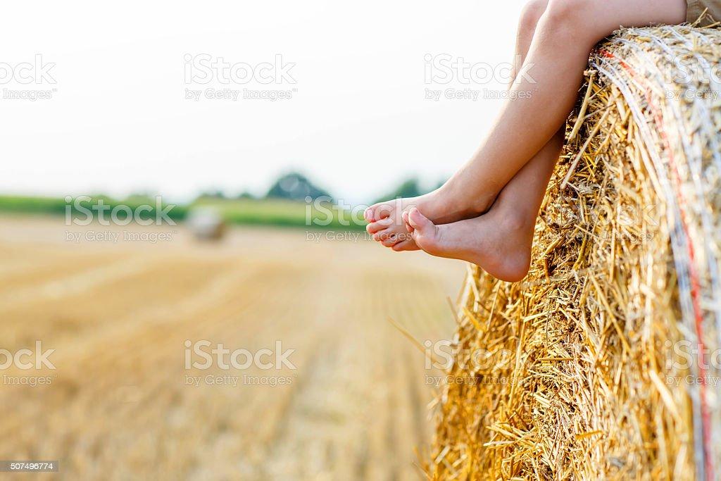 Little kid boy sitting on hay bale in summer stock photo