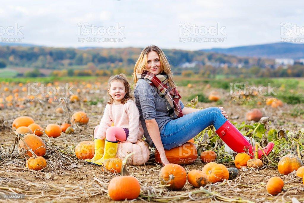 Little kid girl and mother having fun on pumkin field stock photo