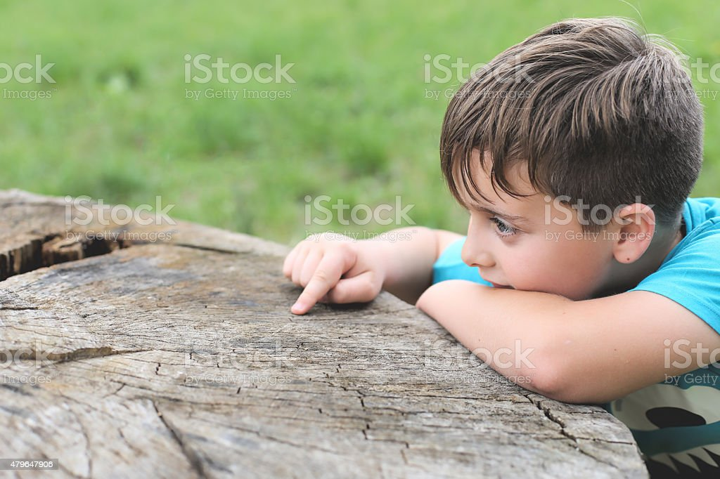 little kid playing with tree stock photo