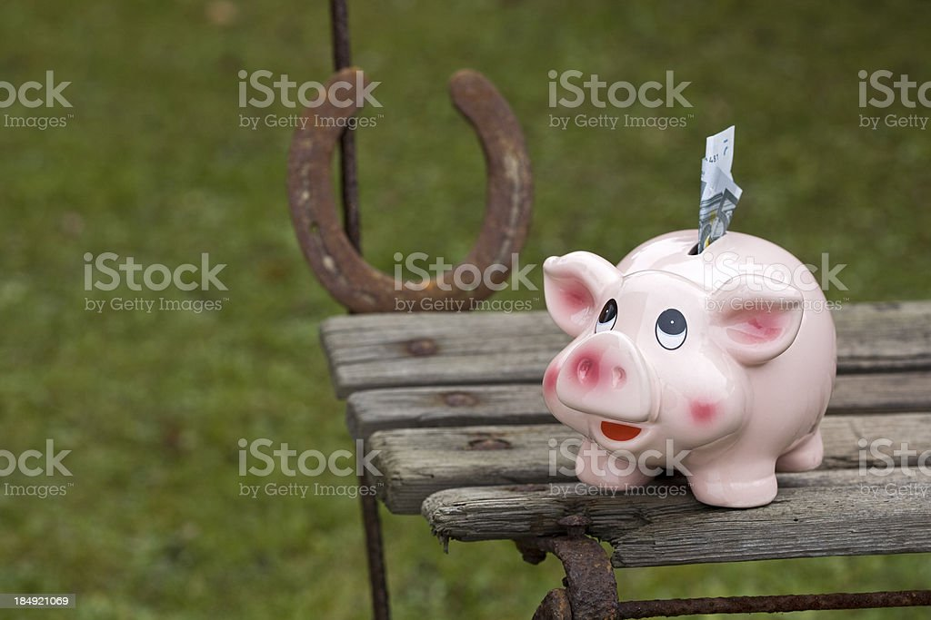 little luck pig royalty-free stock photo