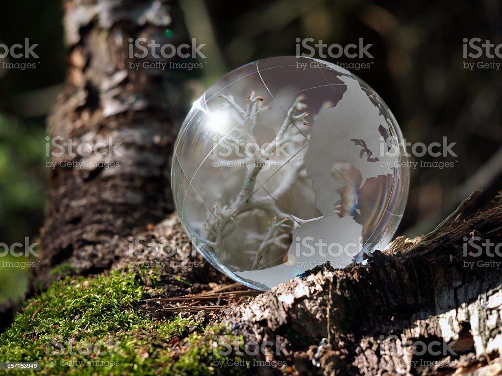 Little macrocosm inside a transparent ball stock photo