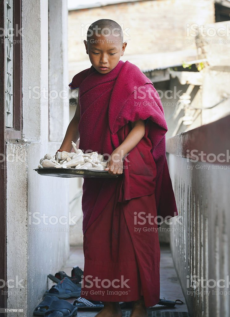 Little Monk royalty-free stock photo