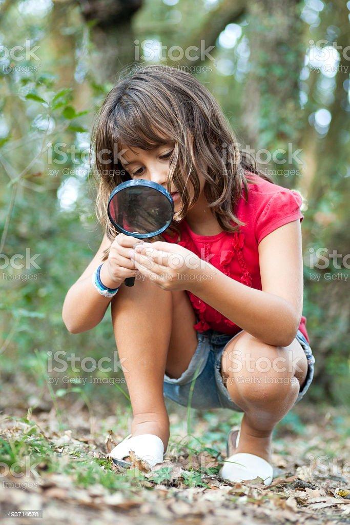 Little naturalist stock photo