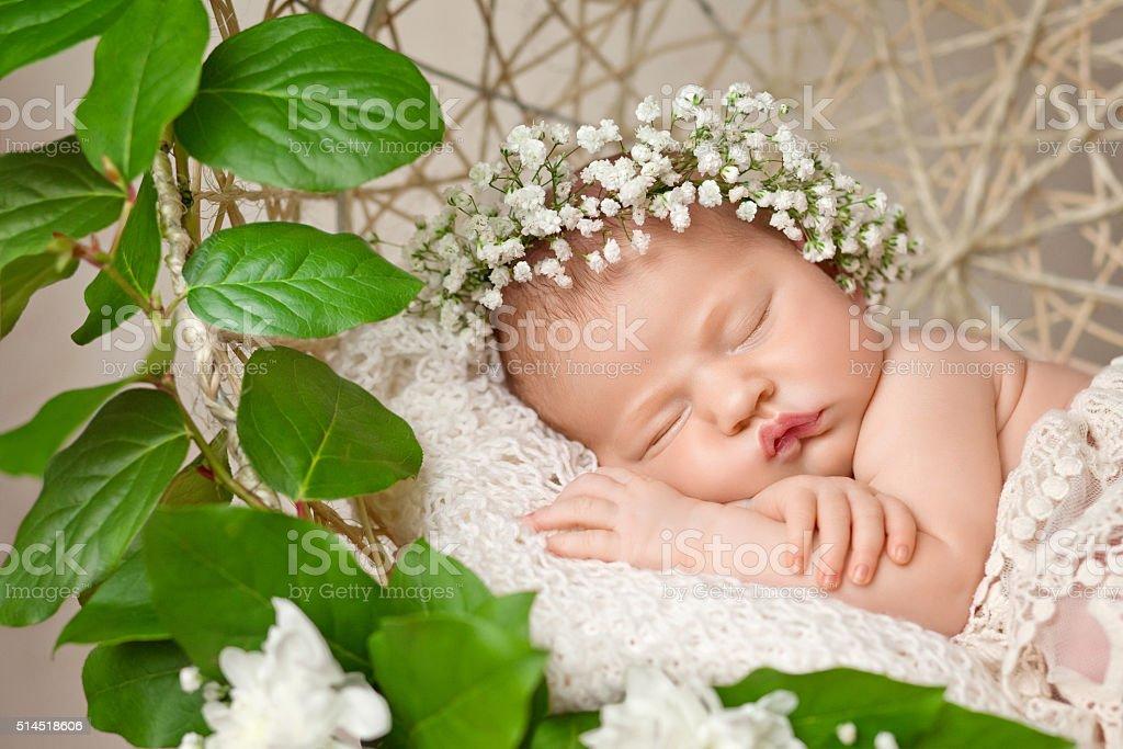 Little newborn girl 11 days, sleeps. Beautiful newborn and flowers stock photo