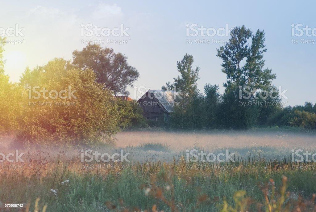 Little old cabin in the field. Fog, sunlight stock photo