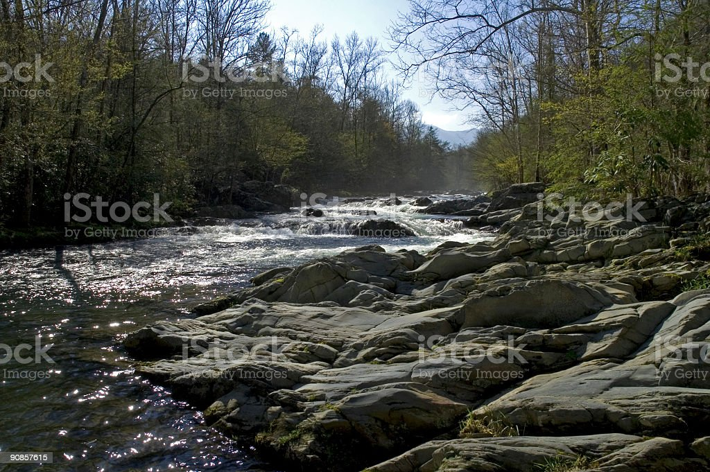 Little Pigeon River, Greenbrier, Great Smoky Mtns NP royalty-free stock photo