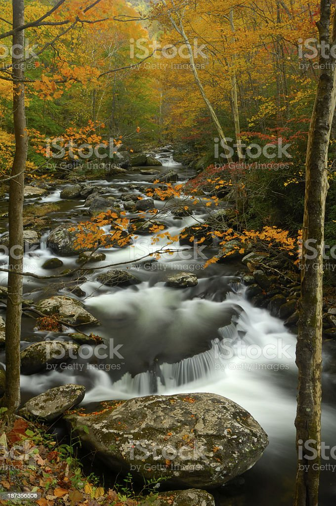 Little Pigeon River in Autumn at Tremont, Great Smoky Mountains stock photo