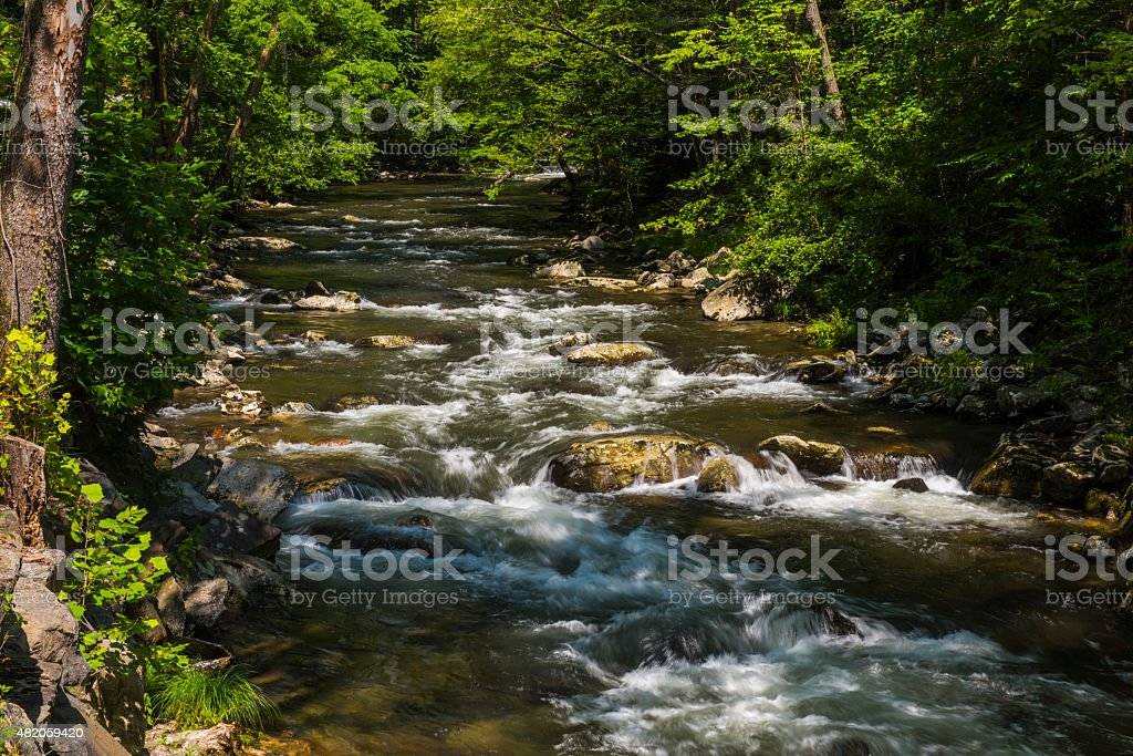 Little Pigeon River in Great Smoky Mountains National Park. stock photo