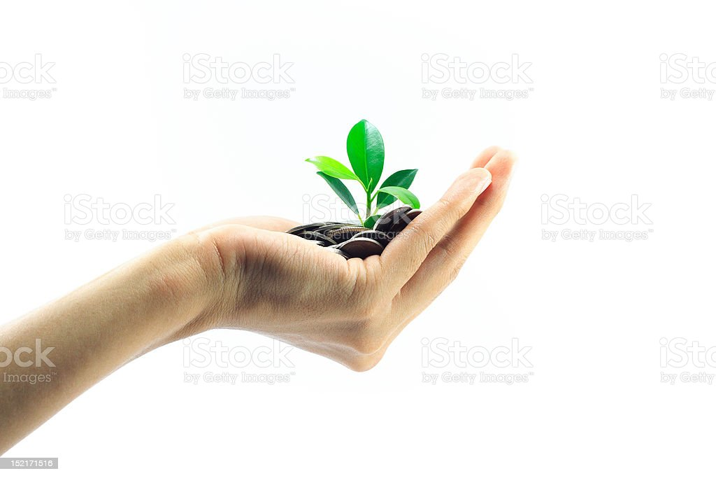 little plant growing from pile of coins on hand royalty-free stock photo
