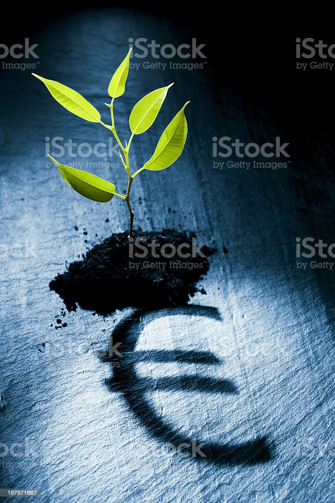 Little plant projecting euro symbol royalty-free stock photo