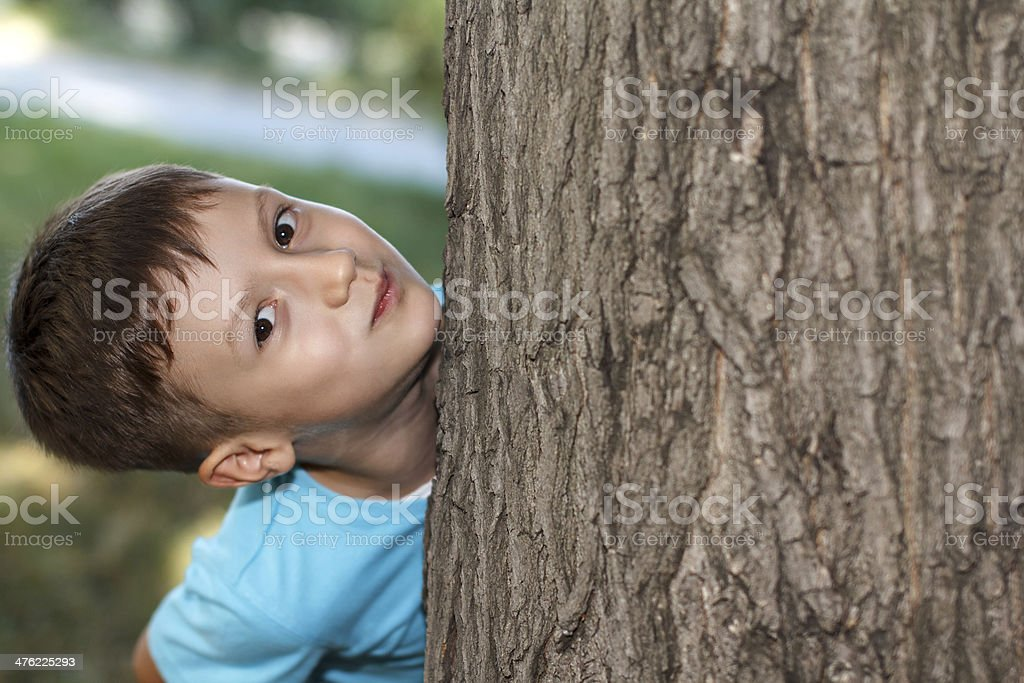 Little preschooler boy hide-and-seek royalty-free stock photo