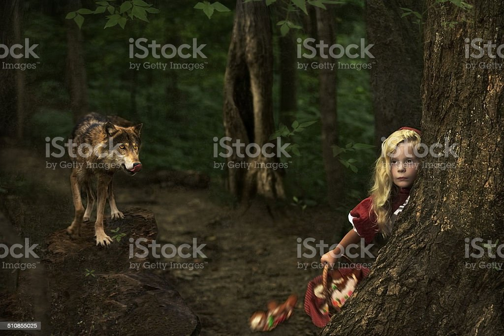 Little Red Riding Hood and wolf in forest stock photo
