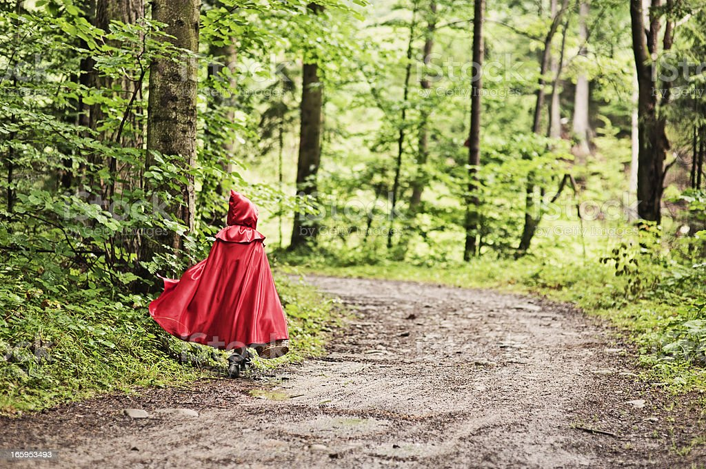 Little Red Riding Hood walking through the forest royalty-free stock photo