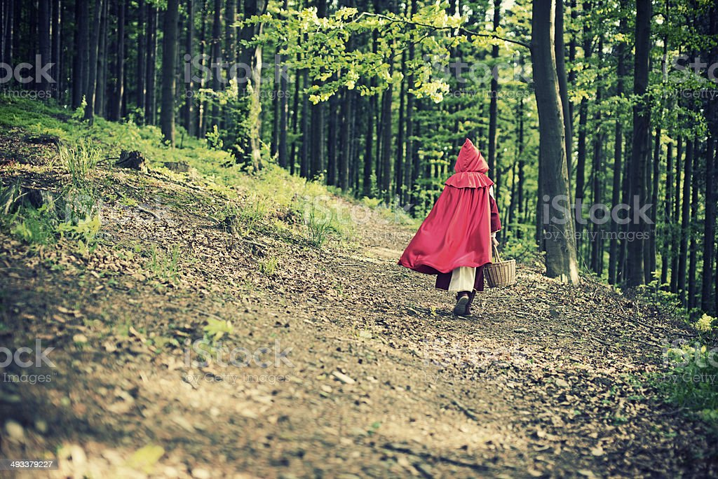 Little Red Riding Hood walking through the forest stock photo