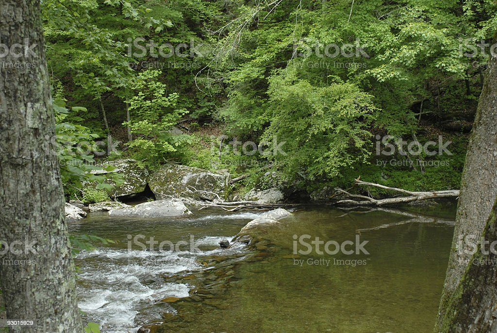 Little River flow royalty-free stock photo