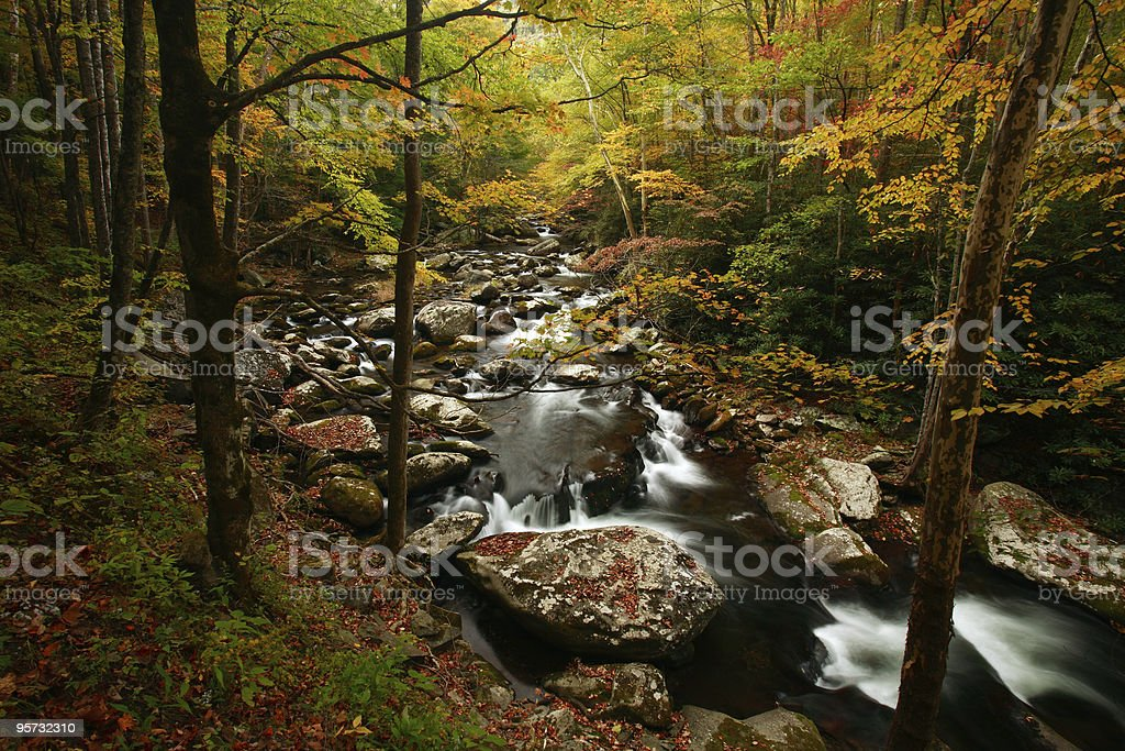 Little River, Great Smoky Mountains National Park royalty-free stock photo