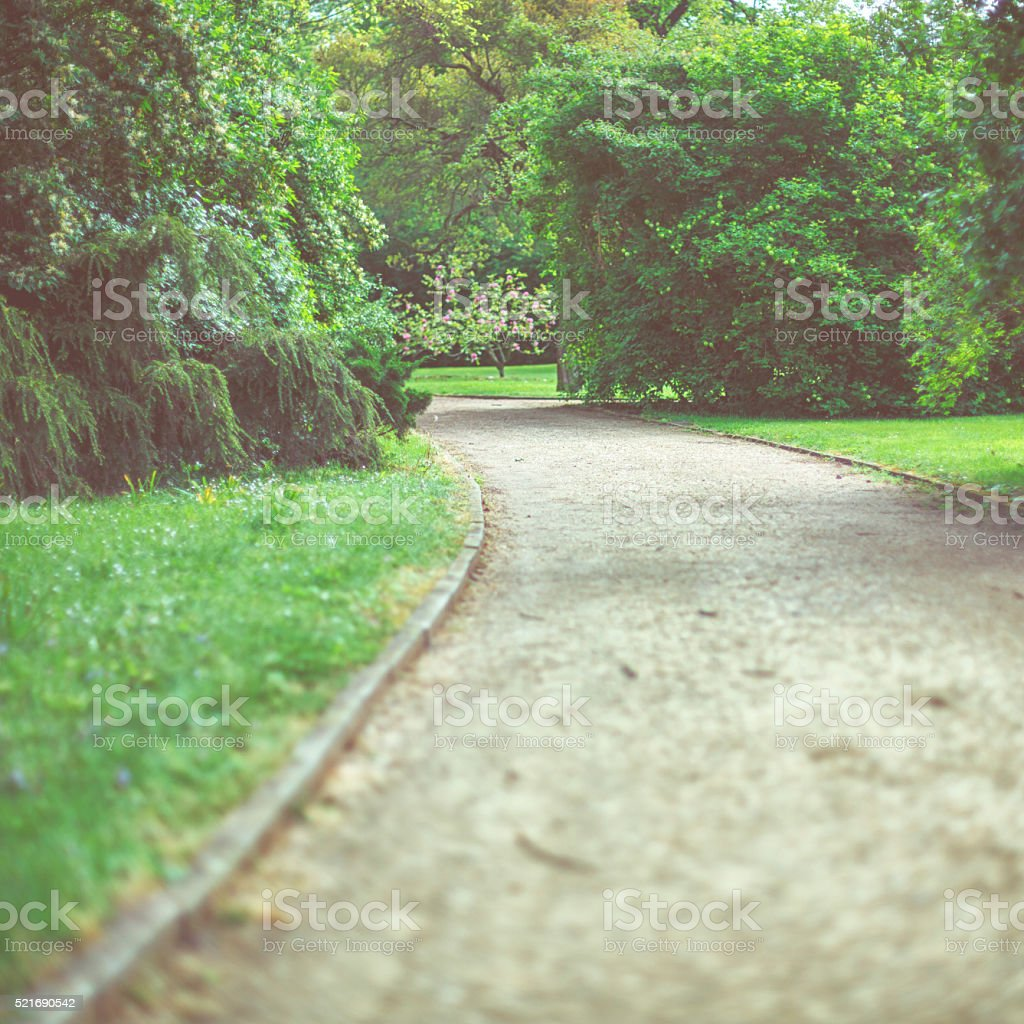 Little road through the park stock photo