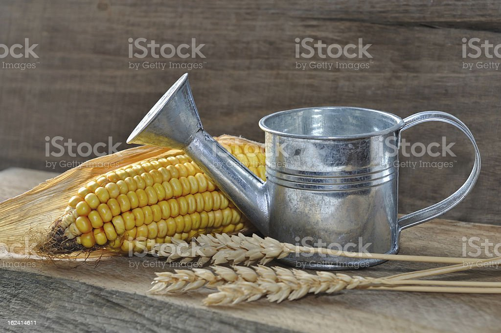 little rustic watering can royalty-free stock photo