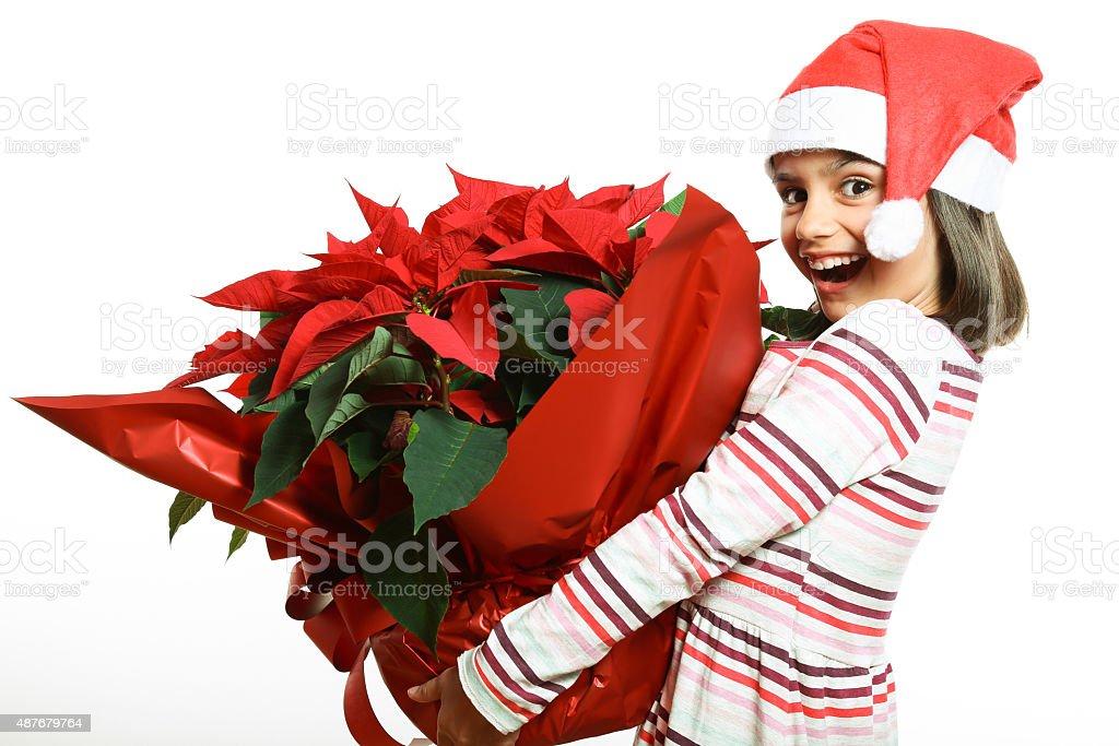 Little Santa with poinsettia stock photo