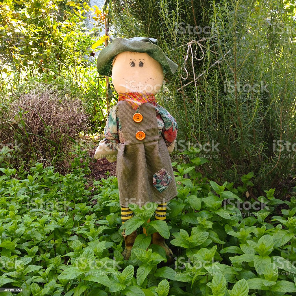 Little scarecrow royalty-free stock photo