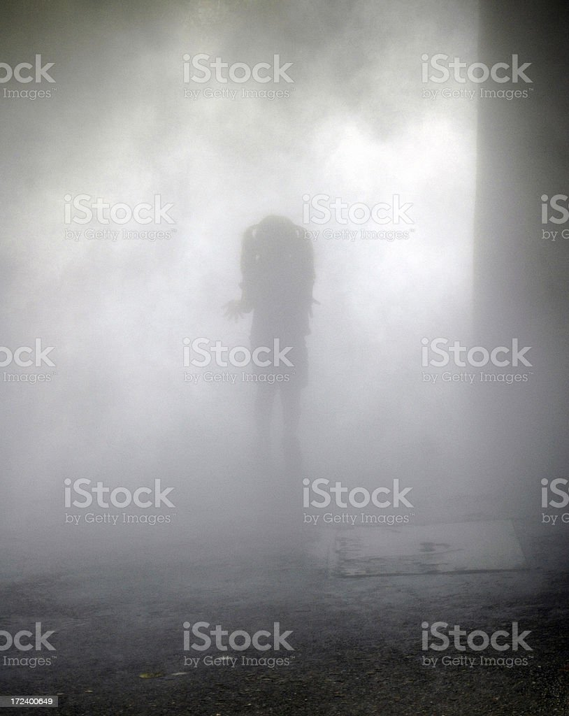 Little Shadow GIrl royalty-free stock photo