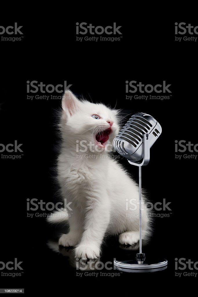 little singer stock photo